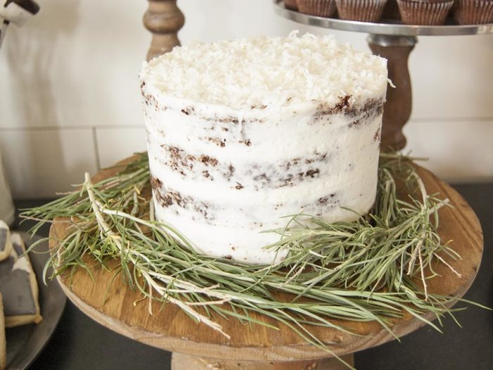 Chocolate Coconut Almond Cake